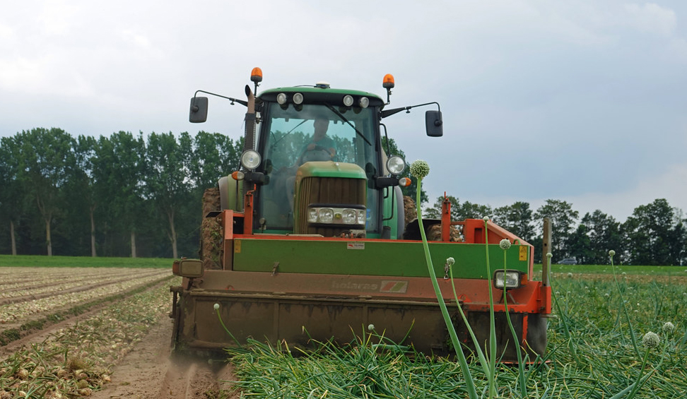 Rubber haulm toppers