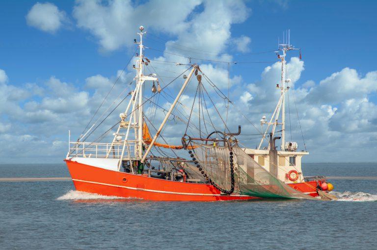 Fischereibranche